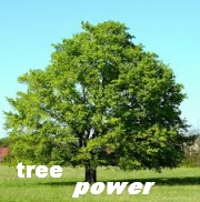 tree power icon.jpg
