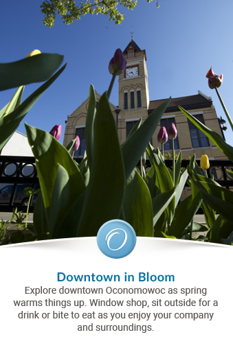 Slideshow_Spring_Downtown
