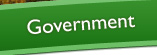 Government
